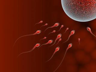Ημερίδα για τη γονιμότητα στο Βόλο