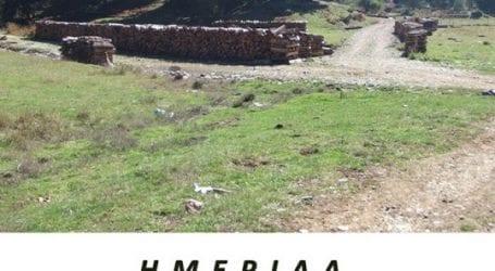 Ημερίδα με θέμα «Δάσος-Βιοπορισμός-Αναψυχή» από το ΚΠΕ Μακρινίτσας