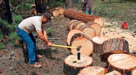 Παραχώρηση δάσους για ξύλευση στους κατοίκους Ν. Πηλίου