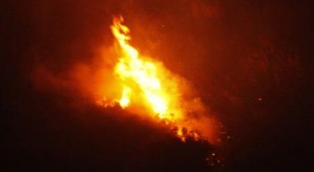 Φωτιά σε δάσος στον Άγιο Λαυρέντιο Πηλίου