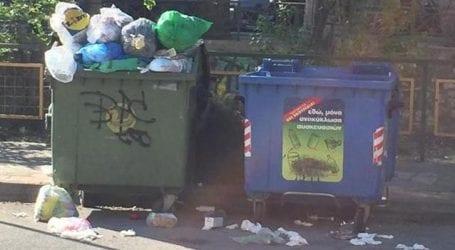 Ο Βόλος της Βιολέττας και των σκουπιδιών