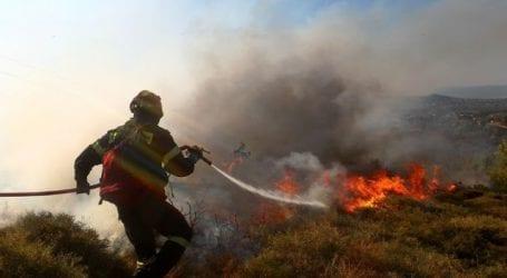 Φωτιά σε δάσος στην Ανάβρα