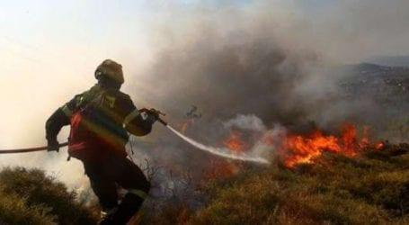 Κινητοποίηση για φωτιά στις Αλυκές