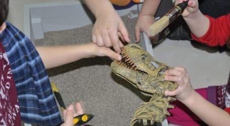 Θερινά προγράμματα για παιδιά στο Μουσείο Φυσικής Ιστορίας Βόλου