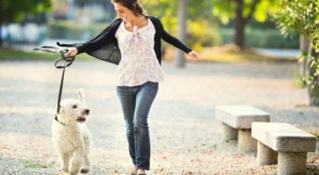Βόλτα με σκύλους στην παραλία του Βόλου
