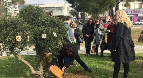 Ένα διαφορετικό δέντρο φυτεύθηκε στο Δημαρχείο του Βόλου! (εικόνες)