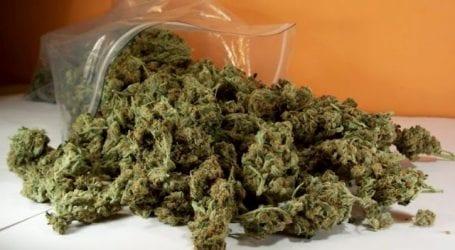 Συνελήφθη 21χρονος στον Βόλο για κατοχή ναρκωτικών