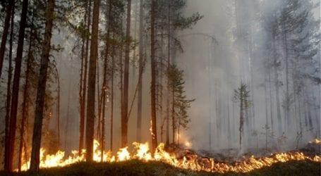 Αύξηση του άσθματος παρατηρείται σε περιοχές που έχουν εκδηλωθεί μεγάλες πυρκαγιές