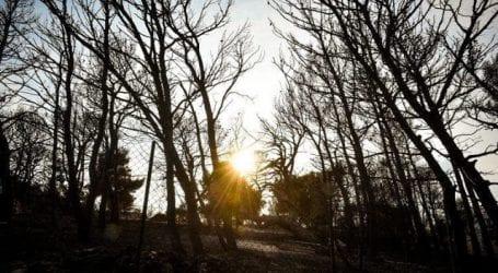 Το Κοινωφελές Ίδρυμα Ιωάννη Σ. Λάτση προσφέρει 5 εκατ. ευρώ για τους πυροπαθείς