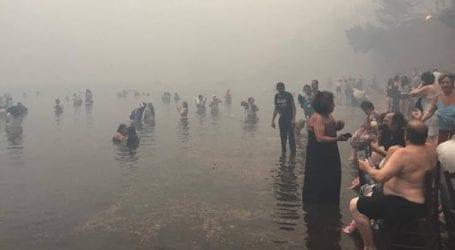 Αποκαλυπτικές εικόνες με πολίτες που μπήκαν στη θάλασσα για να σωθούν από τη φωτιά