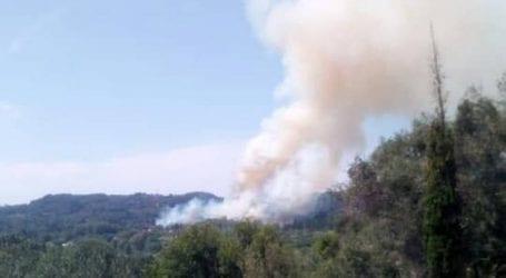 Σε πλήρη ύφεση η πυρκαγιά στην Κέρκυρα