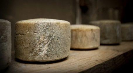 Εντοπίστηκε το αρχαιότερο τυρί του κόσμου