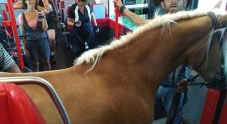 Πήρε το τρένο παρέα με το…άλογό του