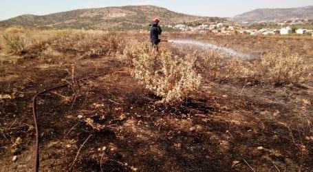 Φωτιά σε αρχαιολογικό χώρο στα Πευκάκια [εικόνες]