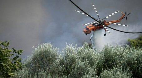 Υπό μερικό έλεγχο φωτιά στο Λαμπίρη Ηλείας