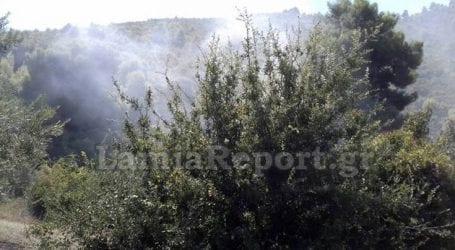 Ταυτόχρονη πυρκαγιά σε δύο σημεία στην Άγναντη Φθιώτιδας