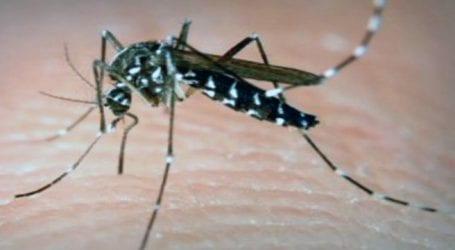 Πώς να προστατευτείτε από τα κουνούπια και τον ιό του Δυτικού Νείλου