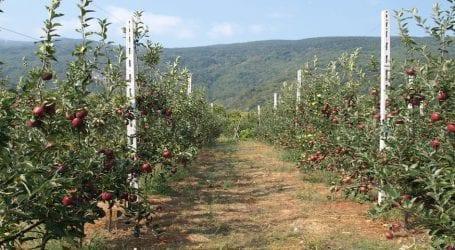 Συνεργασία φορέων για προστασία καλλιεργειών από φυσικά φαινόμενα