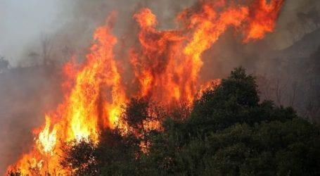 Σε εξέλιξη πυρκαγιά στο Καπελέτο Ηλείας
