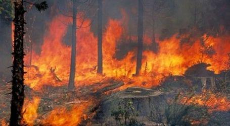 ΗΠΑ: Μεγάλη πυρκαγιά στη βόρεια Καλιφόρνια