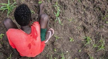 Σώθηκαν 85 παιδιά από δίκτυο παράνομης διακίνησης και εμπορίας ανθρώπων στο Σουδάν