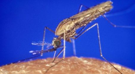Κατάσταση έκτακτης υγειονομικής λόγω ελονοσίας