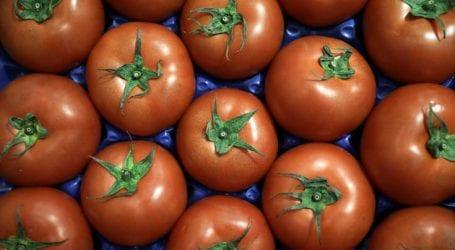 Κατασχέθηκαν 4,6 τόνοι ντομάτας από Ιταλία και Αλβανία με υπολείμματα φυτοφαρμάκων