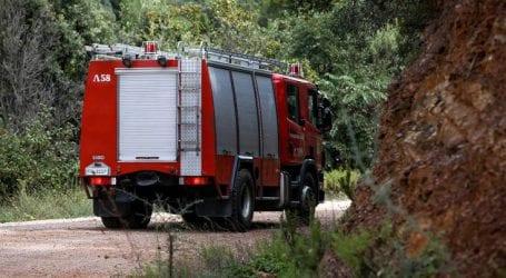 Πυρκαγιά ξέσπασε στο Άλσος Βεΐκου