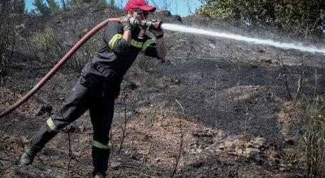 Φωτιά απειλεί ένα από τα τελευταία «παρθένα» δάση της Ρόδου
