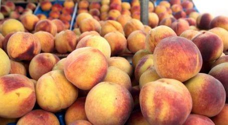 Δεσμεύτηκαν 2,2 τόνοι φρούτα στον Πειραιά
