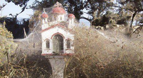 Ένα εντυπωσιακό πέπλο από ιστούς αράχνης σκέπασε τη λίμνη Βιστωνίδα