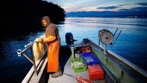 Η κλιματική αλλαγή απειλεί τις λίμνες της Ελβετίας