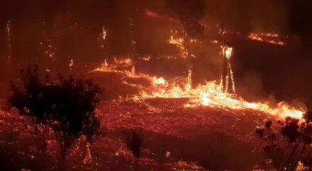 Επτά νεκροί από τις πυρκαγιές στην επαρχία του Δυτικού Ακρωτηρίου