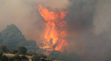 Η περιοχή που κάηκε στη Σιθωνία είναι προς πώληση εδώ και δέκα χρόνια