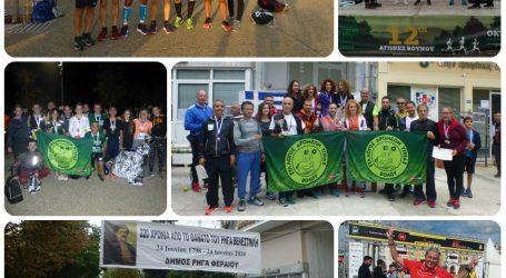 Ρεκόρ συμμετοχών και…ταχύτητας από τον ΣΔ Βόλου στον Διεθνή Νυχτερινό Ημιμαραθώνιο Θεσσαλονίκης