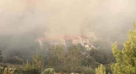 Λαρισαίοι πυροσβέστες στη μάχη με τις φλόγες στη Χαλκιδική