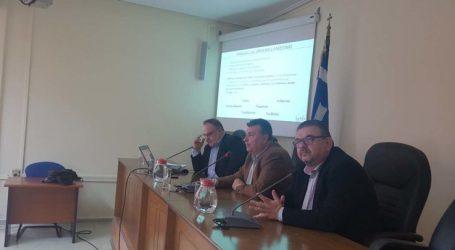 Open Mall: Η συνεργασία Δήμου και Εμπορικού Συλλόγου αλλάζει την Ελασσόνα!
