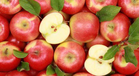 Δέσμευσαν 2,6 τόνους μήλων και αχλαδιών αγνώστου προελεύσεως