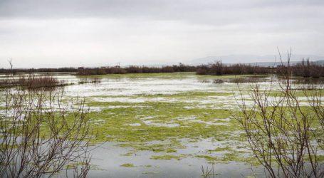 Νεκροί βρέθηκαν πέντε άνθρωποι στον Έβρο