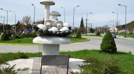 Γρεβενά, «η χώρα των μανιταριών» και της φυσικής ομορφιάς