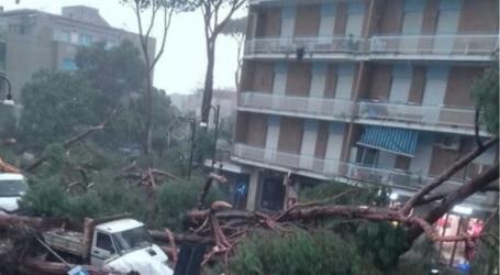 Στους 17 οι νεκροί από την κακοκαιρία, ξεριζώθηκαν εκατομμύρια δέντρα