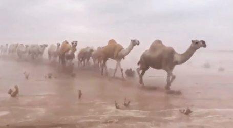 Σ.Αραβία: Βάλτος έγινε η έρημος από τις έντονες βροχοπτώσεις