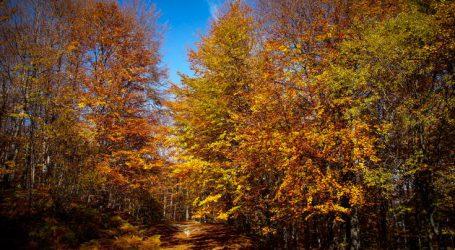 Πανδαισία χρωμάτων στο φθινοπωρινό Βέρμιο