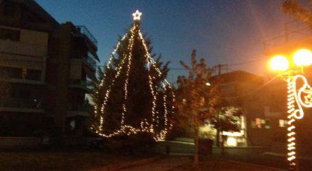 Την Κυριακή 2 Δεκεμβρίου θα ανάψει το Χριστουγεννιάτικο δένδρο στη συνοικία του Πέρα Μαχαλά