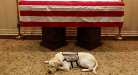 Δίπλα στο φέρετρο του Τζ. Μπους ο πιστός του σκύλος
