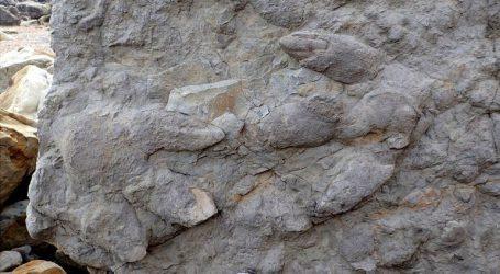 Ανακαλύφθηκαν στη Βρετανία 85 καλοδιατηρημένες πατημασιές δεινοσαύρων