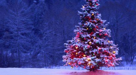 Πότε στολίστηκε το πρώτο χριστουγεννιάτικο δέντρο στην Ελλάδα