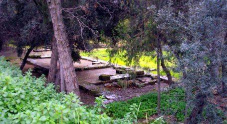 Στους κατοίκους της Ακαδημίας Πλάτωνος 9,5 στρέμματα κοινόχρηστου χώρου