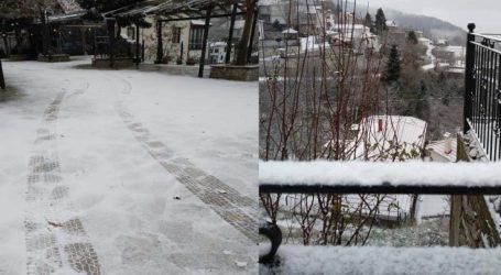 Στα λευκά τα ορεινά του νομού Λάρισας – Χιόνι σε Φάρσαλα και Μακρυχώρι (φωτό βίντεο)