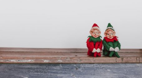Τα ζώδια των Χριστουγέννων